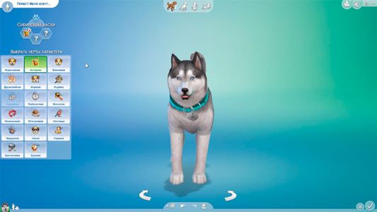 Sims-4-cats-dogs-srrd-screenshot-001