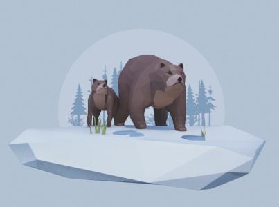 The-wild-eight-model-bears