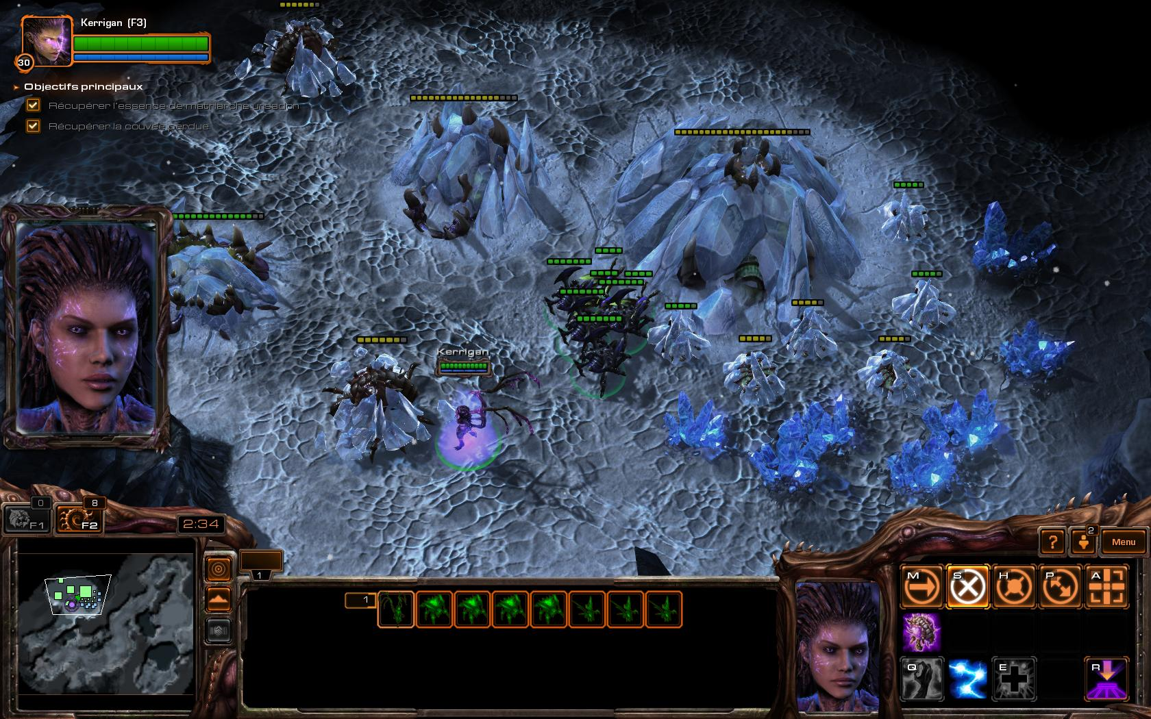 05786612-photo-starcraft-2-heart-of-the-swarm